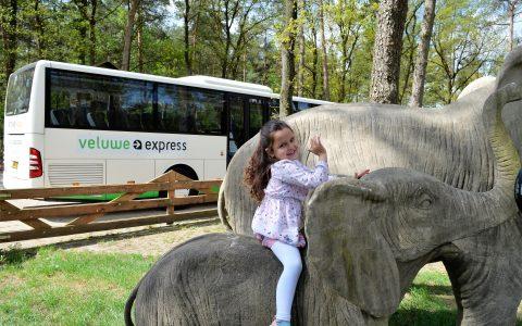 Veluwe Express